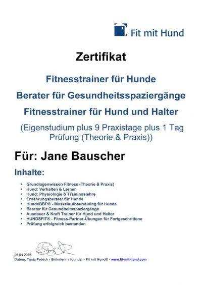 Zertifikat Fitnesstrainerin für Hund & Halter