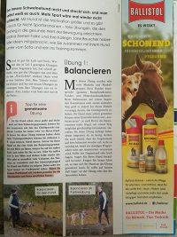 Vom Sofahüter zur Sportskanone- HundeWelt Ausgabe 04/18, Seite 2