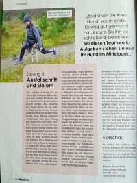 Vom Sofahüter zur Sportskanone- HundeWelt Ausgabe 04/18, Seite 3