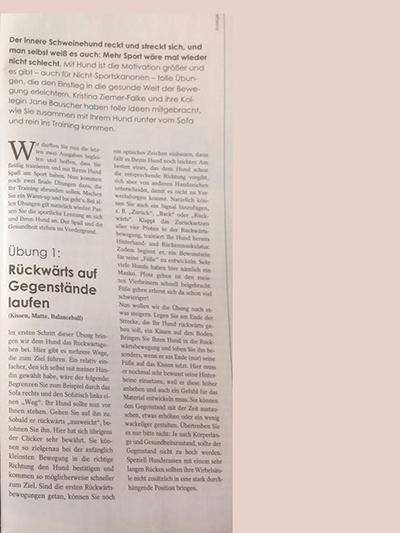 Vom Sofahüter zur Sportskanone: HundeWelt Magazin 05/18