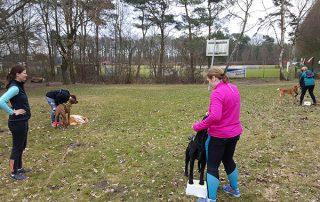 """Muskelaufbau-Training für den Hund """"Pfoten auf den Hocker"""""""